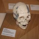 Neandertal21.3.180004